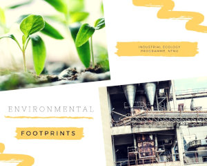 Environmental Footprints Explorer - icon