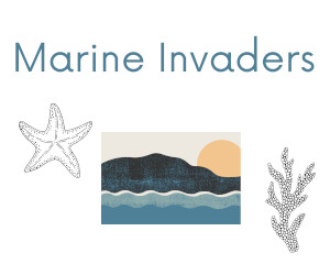Marine Invaders - icon