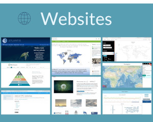Websites - icon